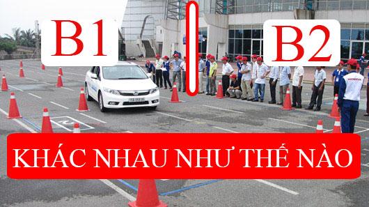 Nên thi bằng lái xe B1 hay B2